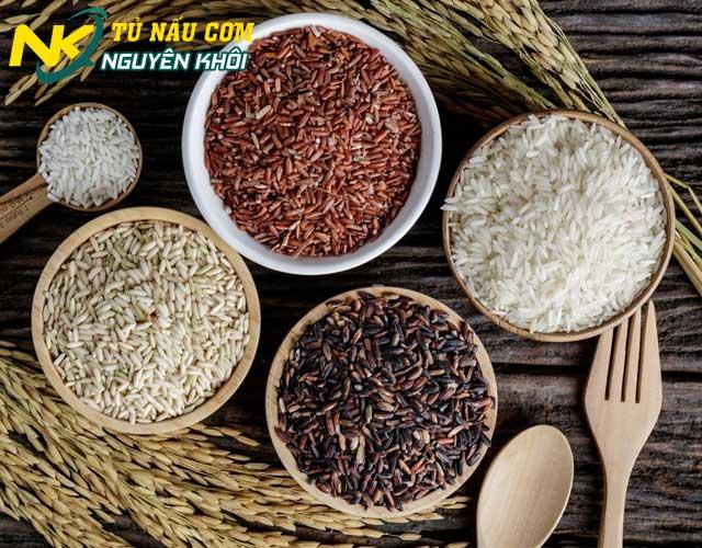 1kg gạo nấu được bao nhiêu bát cơm